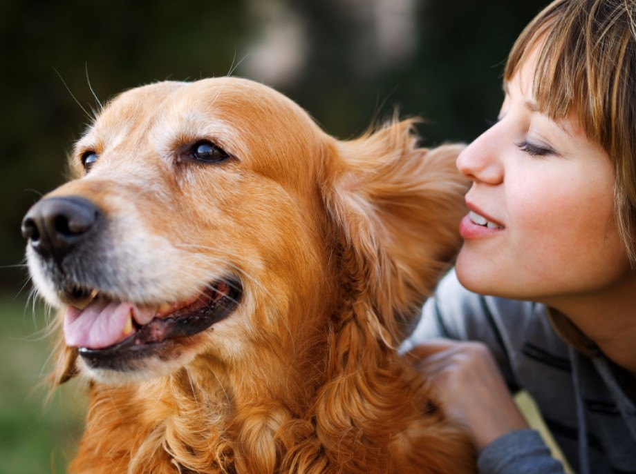 cropped-the-ways-to-make-your-pets-happy
